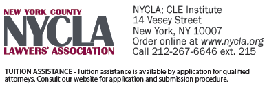 NYC Art, Architecture, Litigation, Copyright, Licensing, and International Lawyer